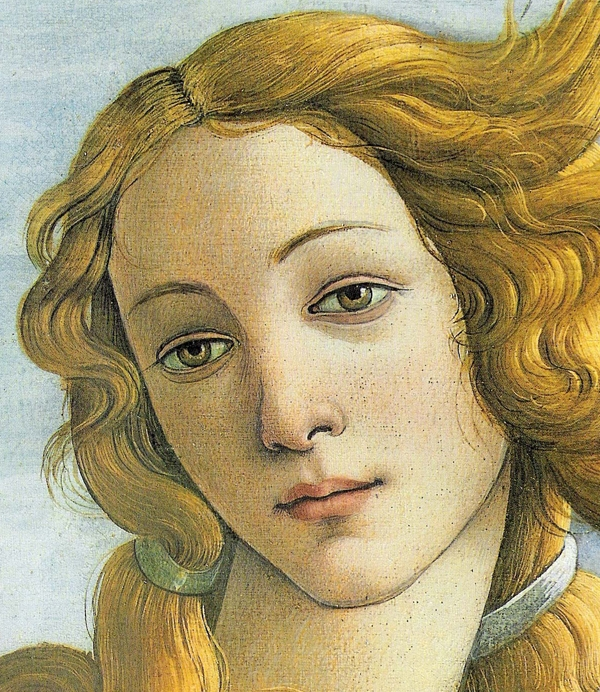 Botticelli's Venus at the...